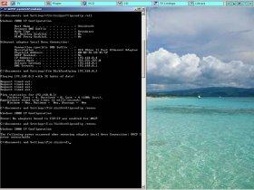 ipconfig_renew.jpg
